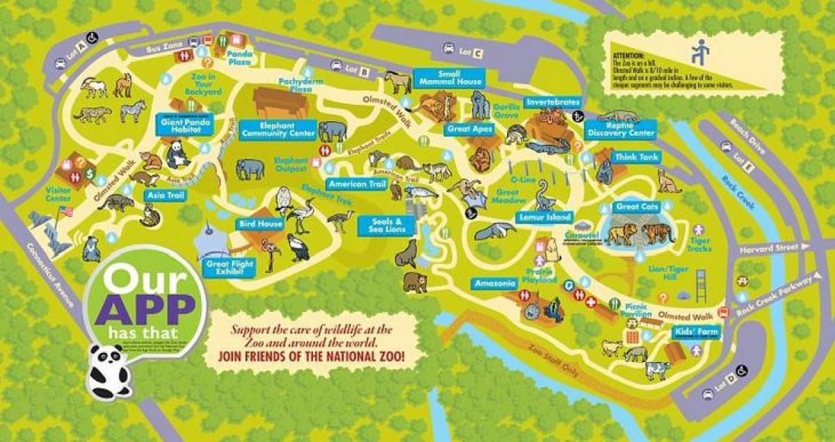 Washington dc zoo map - National zoo washington dc map (District of on stadium map, bedroom map, community map, zog map, aquarium map, museum map, playground map, sense8 map, singapore map, world map, the 100 map, parks map, animal map, beach map, farm map, ocean map, neighborhood map, illegal wildlife trade map, big cat map, z nation map,